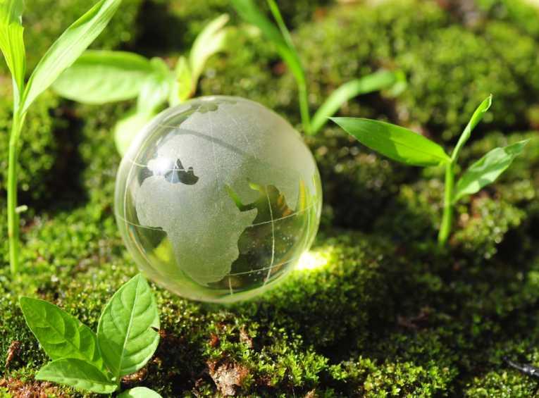 chisiamo_green.jpg